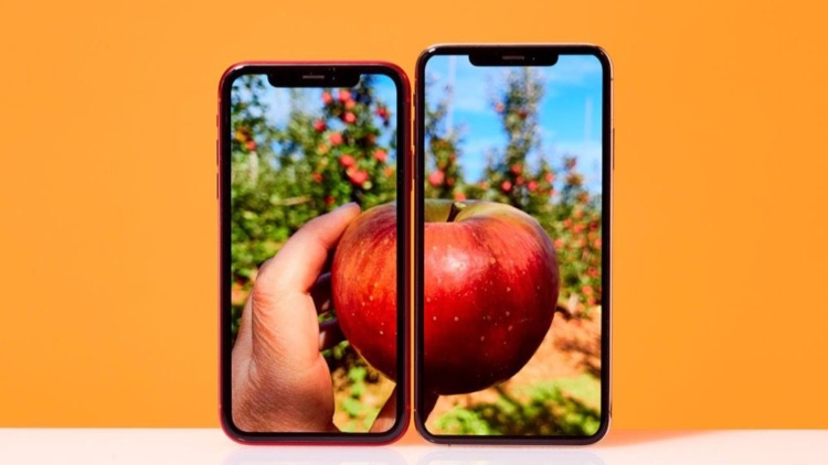 test iphone xr